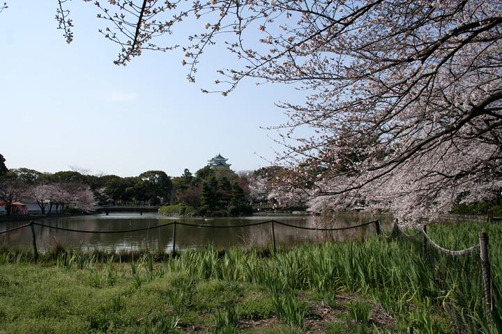 北側から見た名古屋城