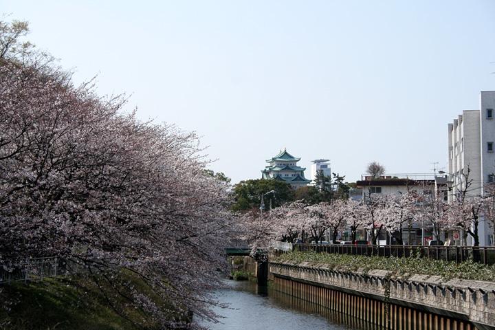 堀川越しに見た名古屋城