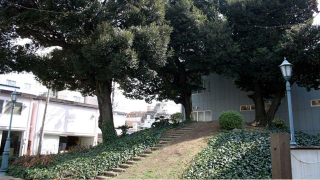 現在の風景 那古野山公園