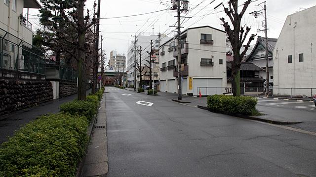 現在の風景 写真右手奥に見えるのは崇覚寺の屋根