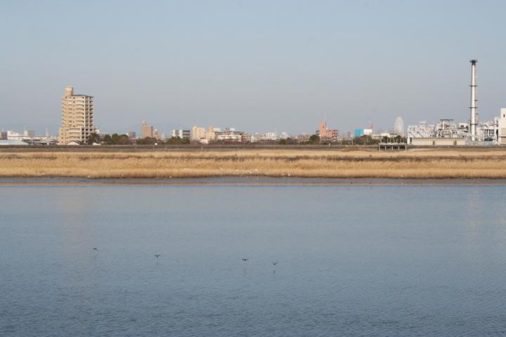 新川の岸から庄内川の岸をのぞむ