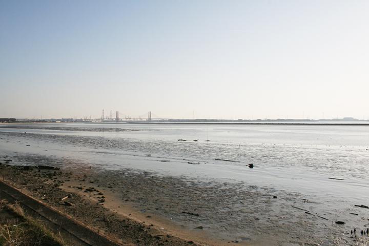 藤前から金城ふ頭(左)、名港西大橋、飛島(左)をのぞむ
