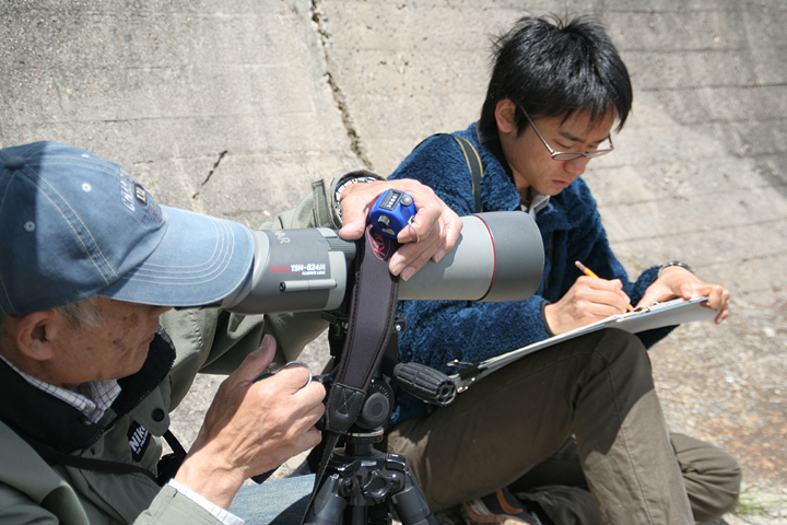 野鳥の分布や行動を観察する環境省の職員