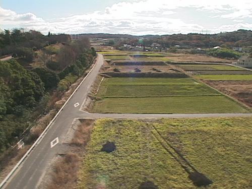 もとの農地へと復元された(2007年1月)