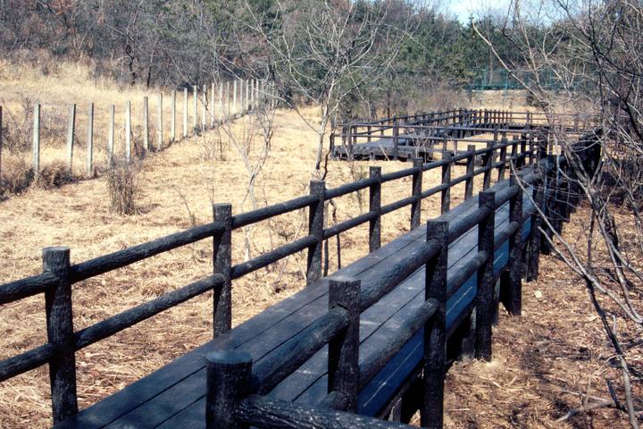 湿地保全に向けた名古屋市による木道整備(写真:柴田美子)