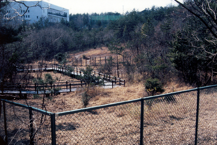 フェンスと木道が設置された(1996年)写真:柴田美子