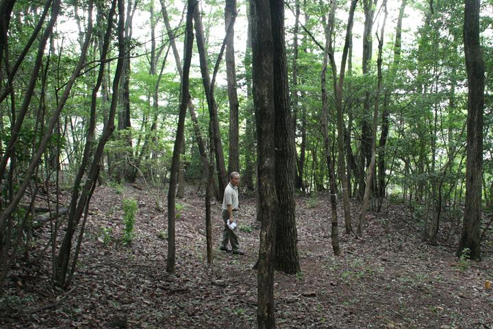 学内の里山を散策する小野知洋教授