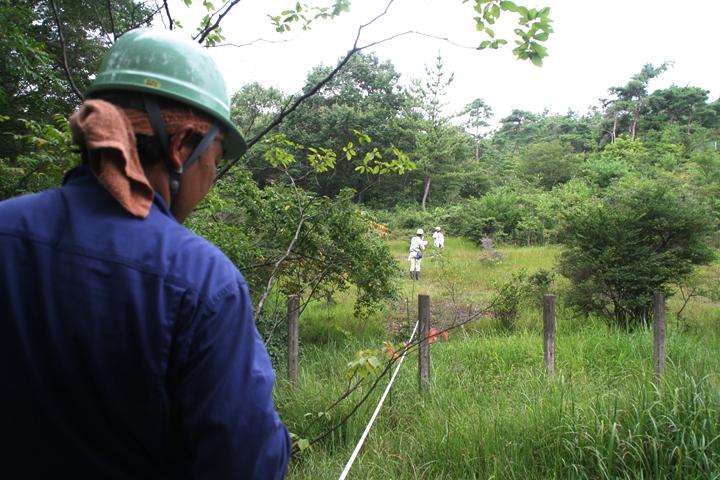 植生調査にむけて湿地に杭を入れひもを結わえていく(2009年)