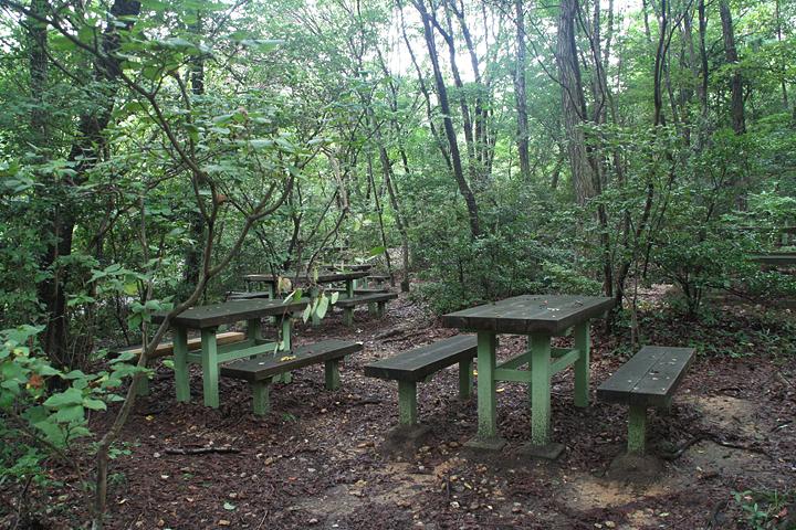 八竜緑地にはイスとテーブルも整備されている