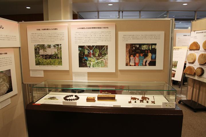 熱帯林で暮らす人々の生活を紹介するパネル