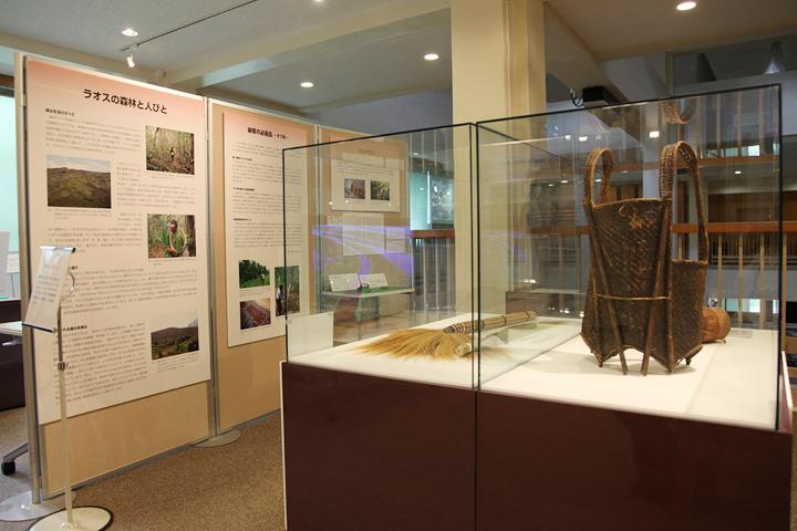 熱帯林で暮らす人々の道具を展示