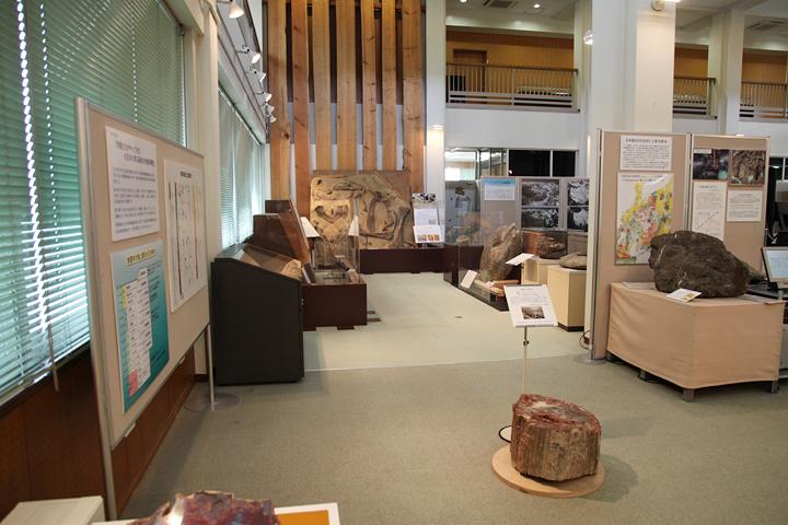 古代の生物の化石などの展示
