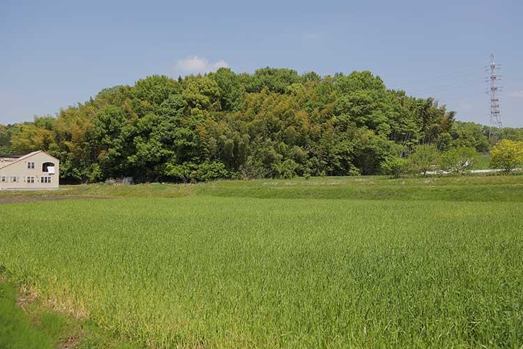 伊保東城跡