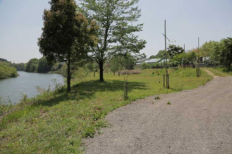旧飯田街道と矢作川