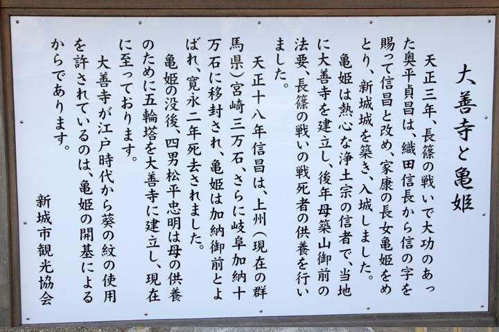 大善寺と亀姫解説