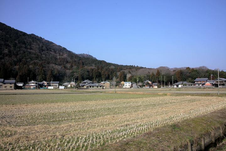 養老町桜井