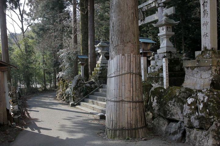 白鳥神社とみゆき街道(養老町桜井)