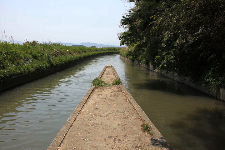 雲出井(くもずゆ) 水を三分する灌漑用水路