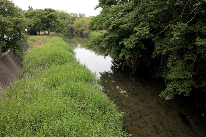 祓川 松阪市と明和町の境界を流れる