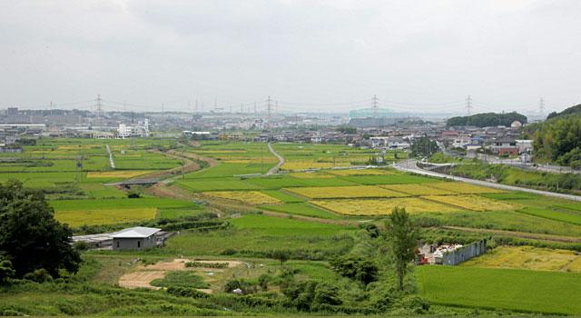 愛知池から見た東郷町