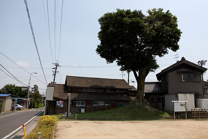 富田の一里塚(南塚)
