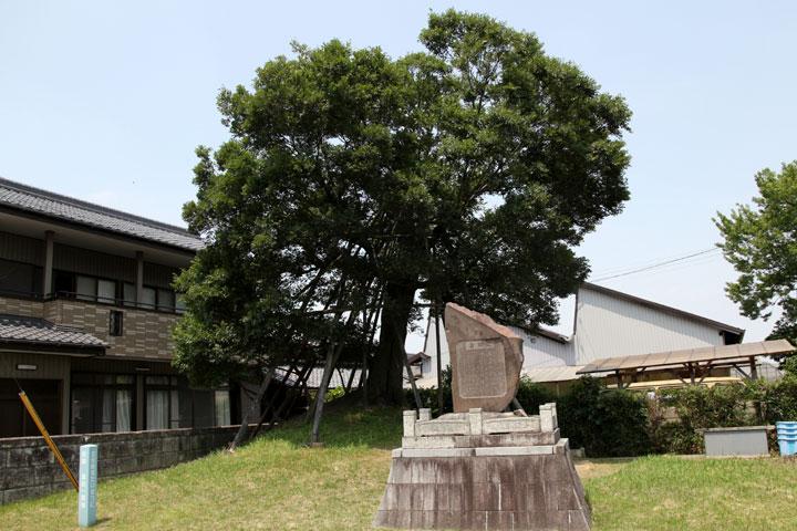 両塚が残る国指定の遺跡