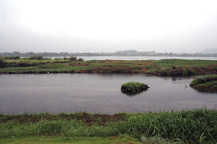 起定渡船場近辺の木曽川