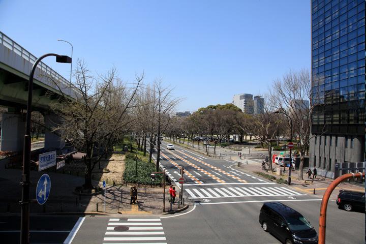 現在の若宮大通と白川公園