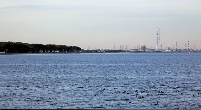 武豊町の海岸線
