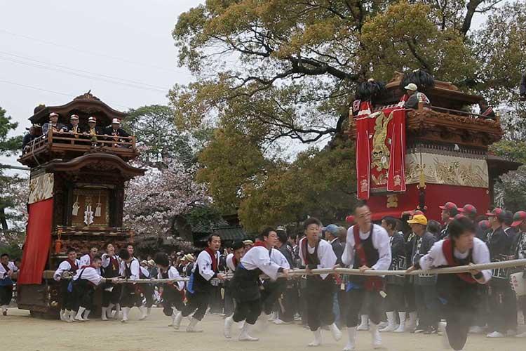 武雄神社春の例祭 山車曳き込み
