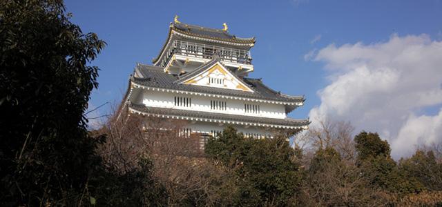 岐阜城は金華山山頂に位置し、1201年に鎌倉幕府執事二階堂行政により始めて砦が築かれたと いわれている。岩山の上にそびえる岐阜城は、難攻不落の城としても知られ 『美濃を制すものは天下を制す』と言われるほどであった。