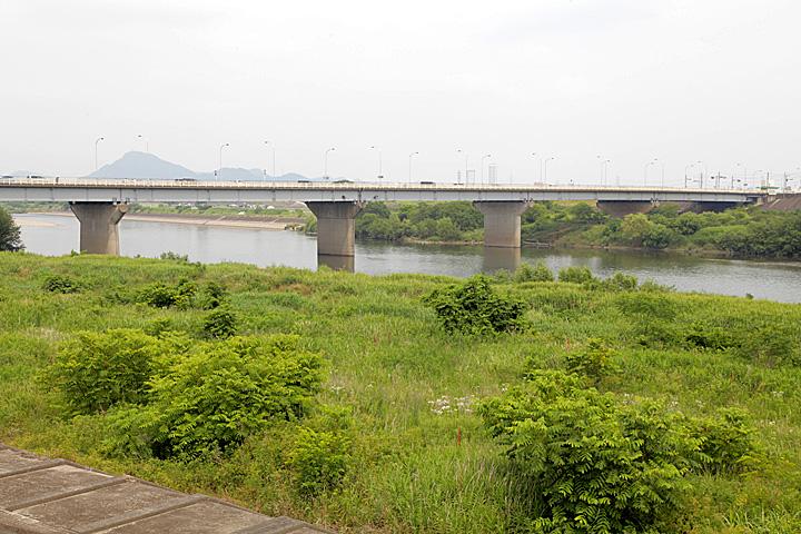 河渡の渡し(長良川)
