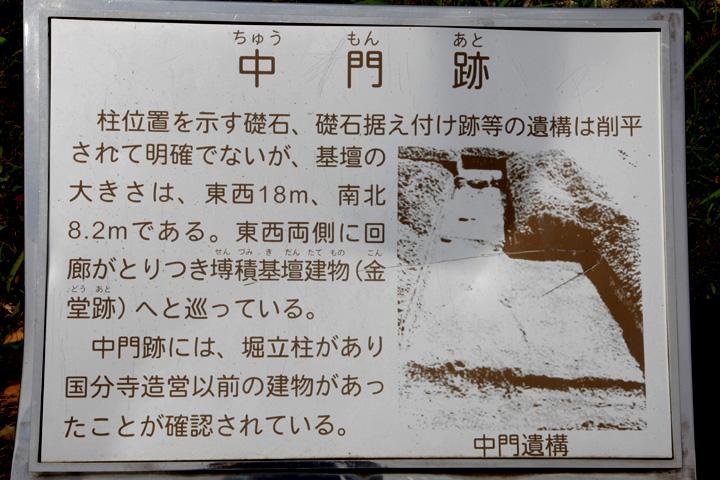 美濃国分寺中跡