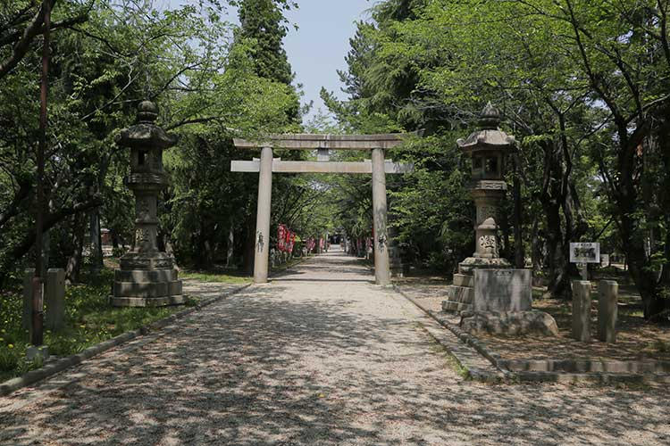 春日神社参道