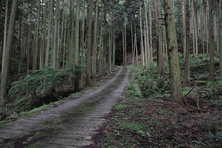 片山神社へ