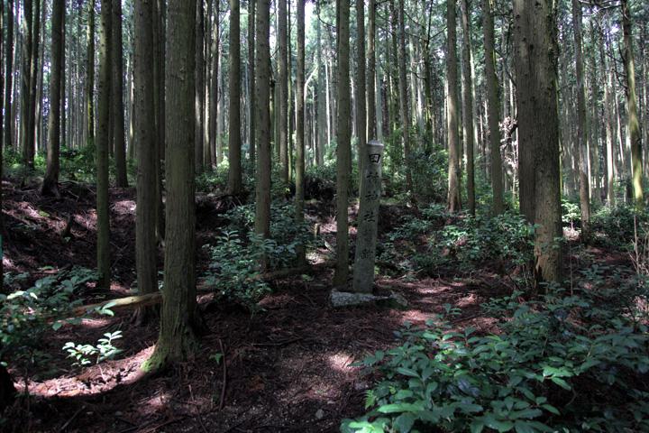 鏡岩に通じる道の途中にある田村神社跡碑