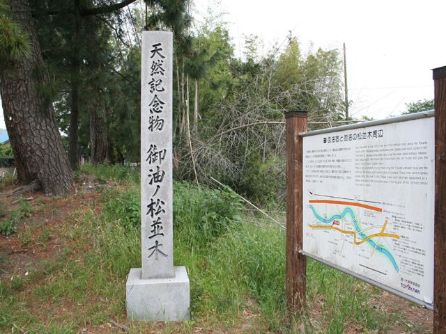 松並木入り口に立つ石碑