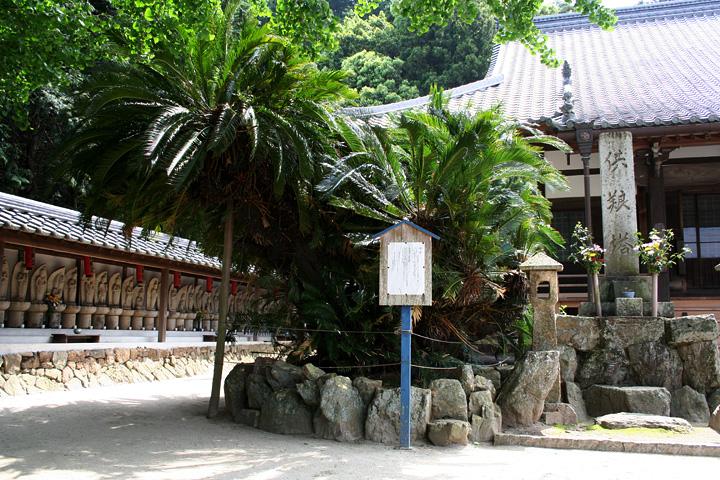 境内の大きな蘇鉄は。安藤広重の東海道五十三次、赤坂宿の蘇鉄の モデルと伝えられる。