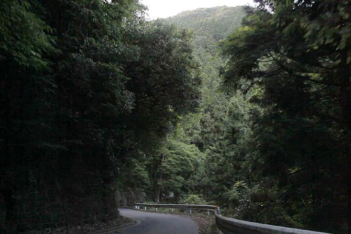 在家へ山道(国道25号線)を下る