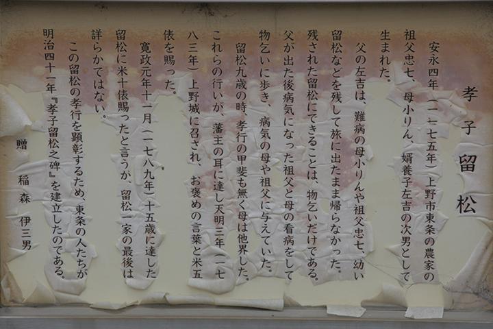 孝子留松の解説