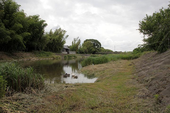 柘植川(西柘植) 柘植川は木津川主支流のひとつ服部川最大の支流
