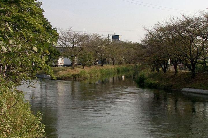 入鹿池方面に流れる五条川