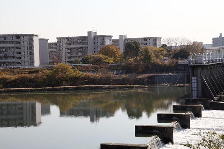 堀川取水口