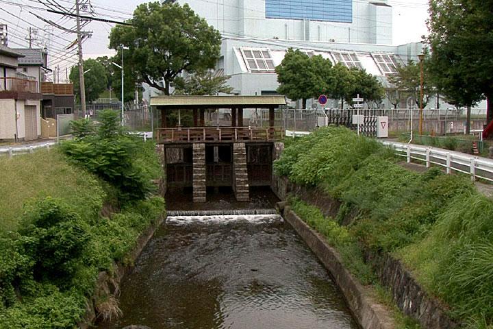 水量調整用の水門「黒川樋門」