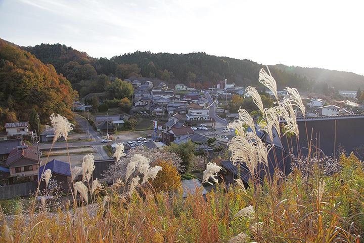 四季桜公園からの眺め