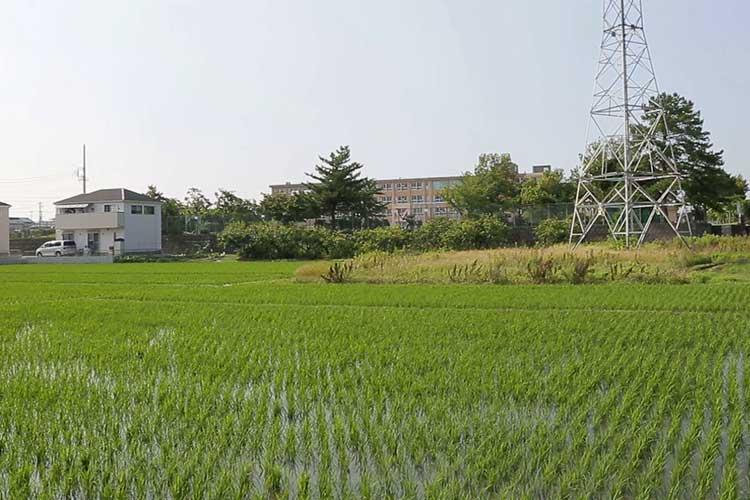楽田城跡(楽田小学校)