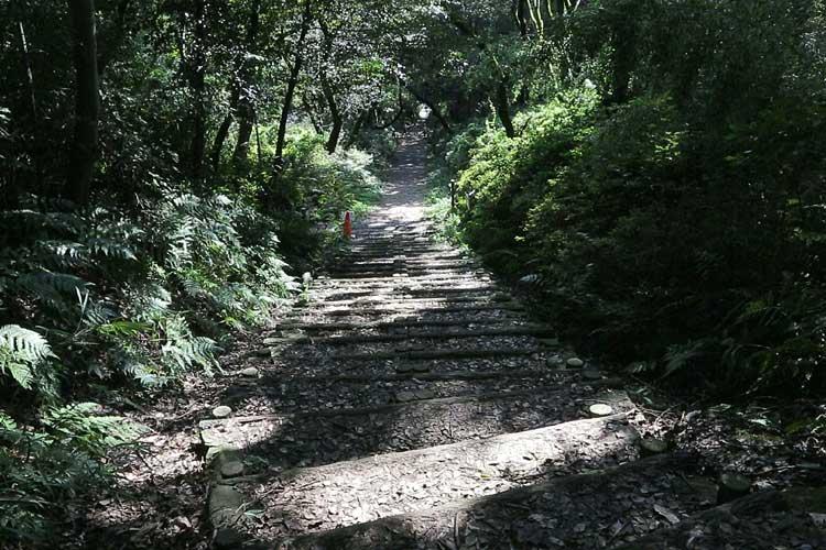 真っすぐ山頂に向かう大手道