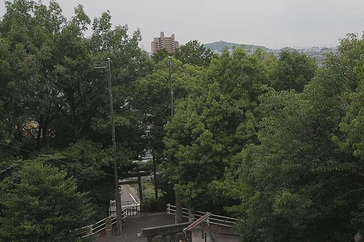 岩崎山砦跡から小牧山を見る