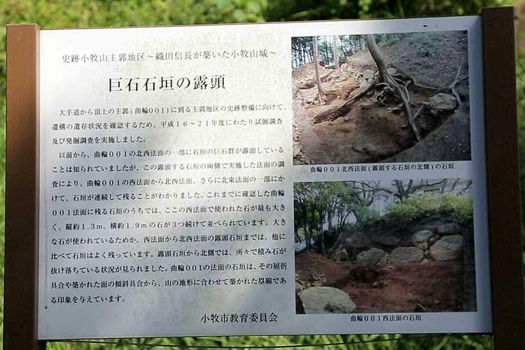 巨石石垣の露頭