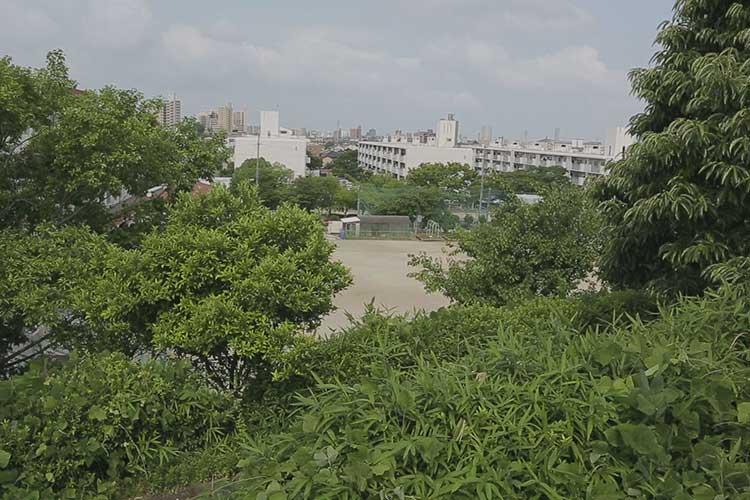 小幡城跡からの風景